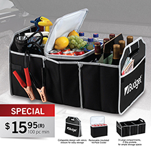 TO713<Br><br>AUTO TRUNK ORGANIZER W/ REMOVABLE COOLER